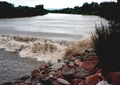 The Severn tidal river bore – the largest and most famous river bore in the UK